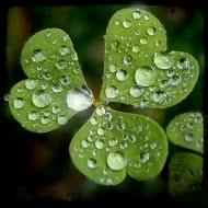 Keajaiban Hujan