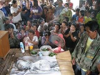 4 Makhluk Aneh Di Temukan di Pedalaman Hutan Thailand